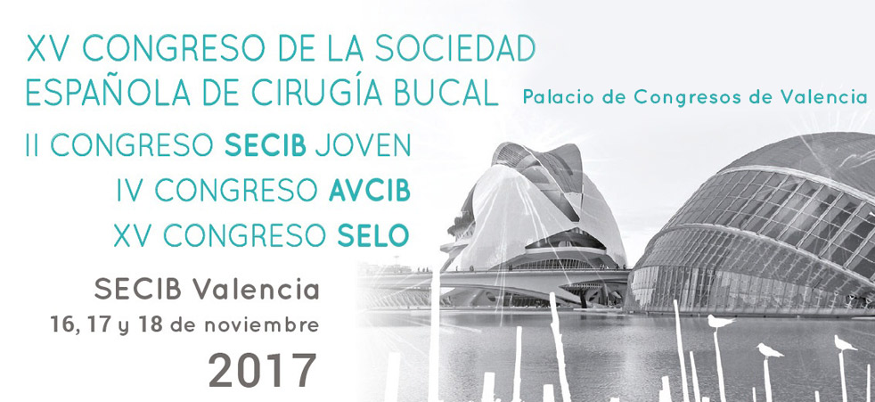 secib valencia 2017